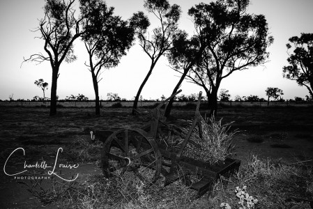 Nardoo Station Relic Cart PremB&W147 Final Website